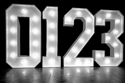 LED SIGNS- .NUMBERS