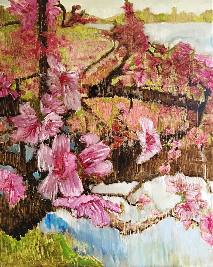 Peach Blossom48x40.JPG