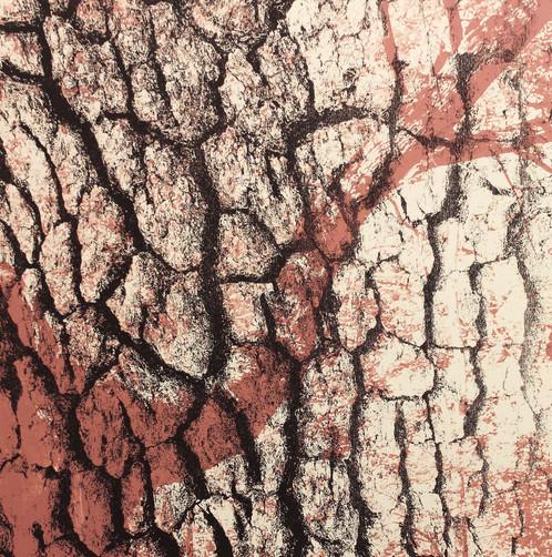 Oak Bark Print