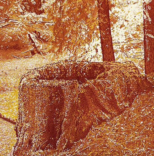 Stump Print