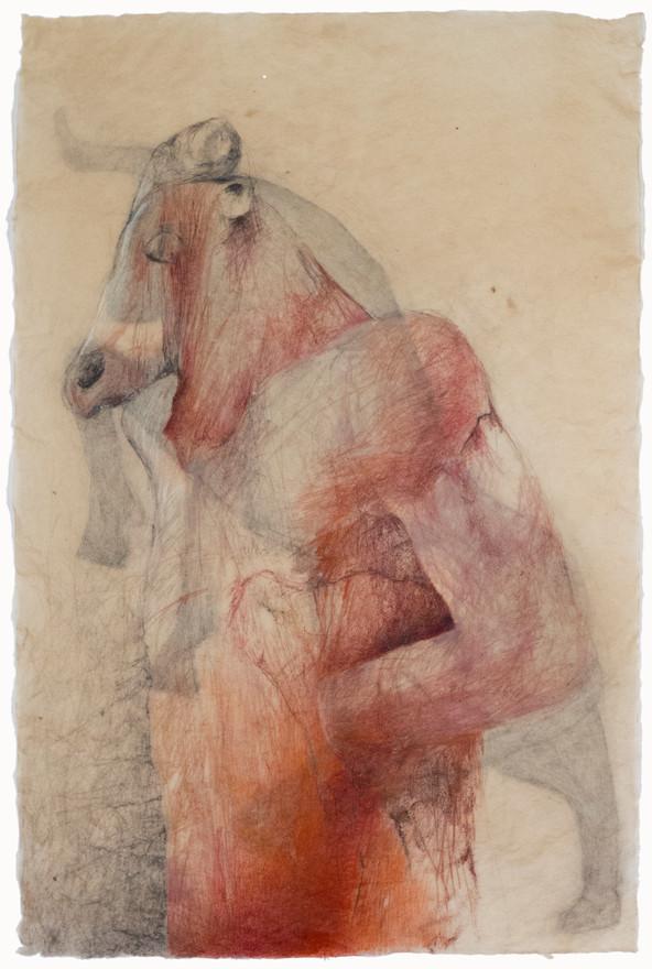 Minotaur and Bull