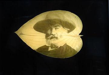 54_Whitman.Brady.1865-7.JPG