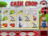 CashCropSSPU.jpg