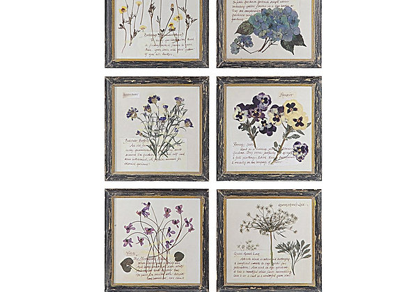 Floral Image in Wood Frame - 6 styles