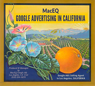 Google Ads Selling Agent in Los Angeles & California