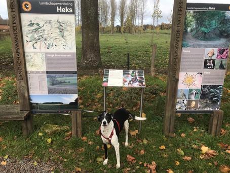 Heks wandelingen in Haspengouw