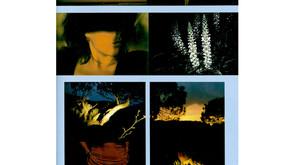 Las Huellas del Deseo publication 2005 Fotografia Actual Spain