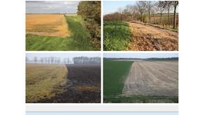My series on Glyfosate published in De Standaard