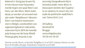 """Article in """"the Collector"""" about my exhibition in Gallery 44 in Brugge 2015"""