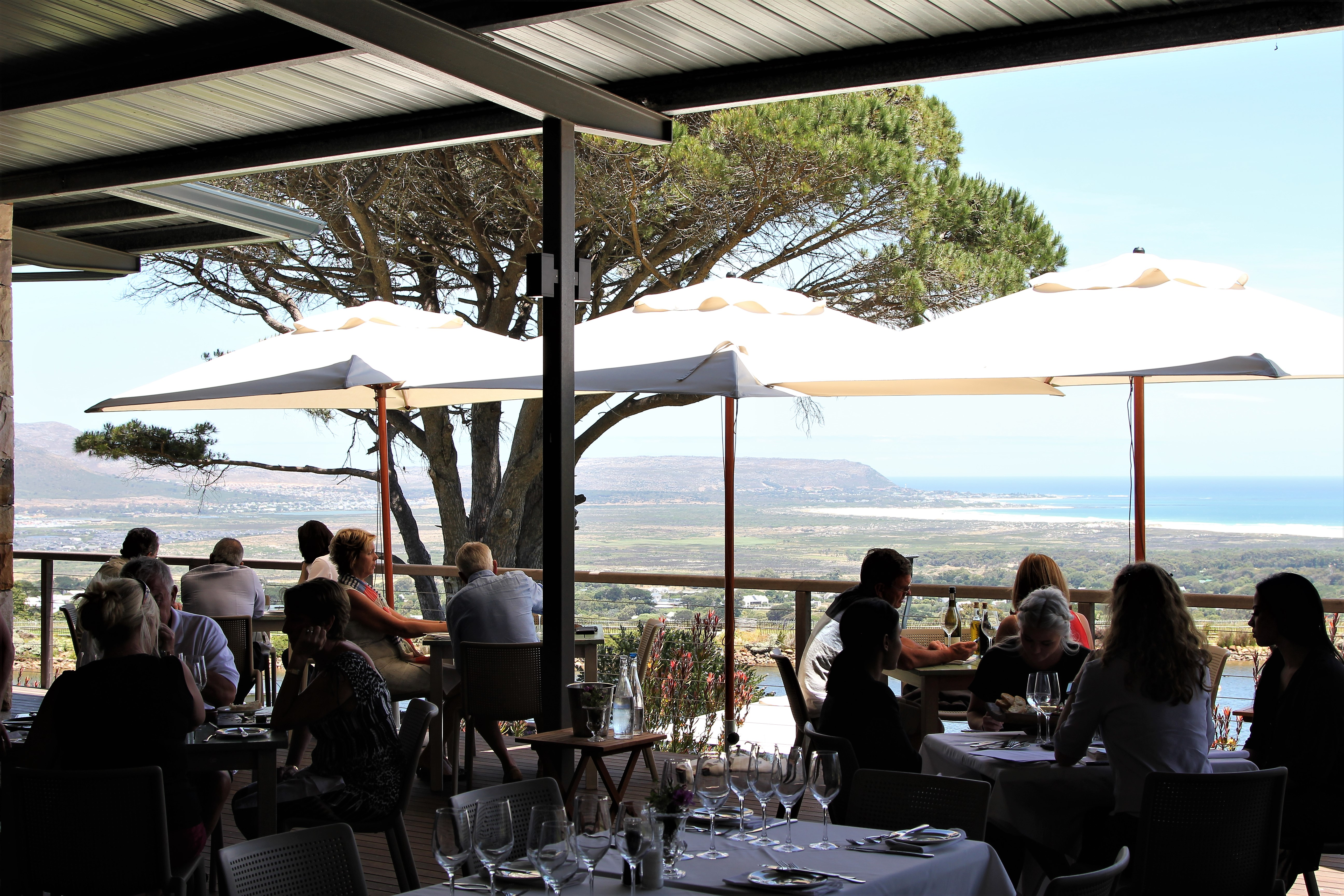Lunch at Cape Point Vineyards