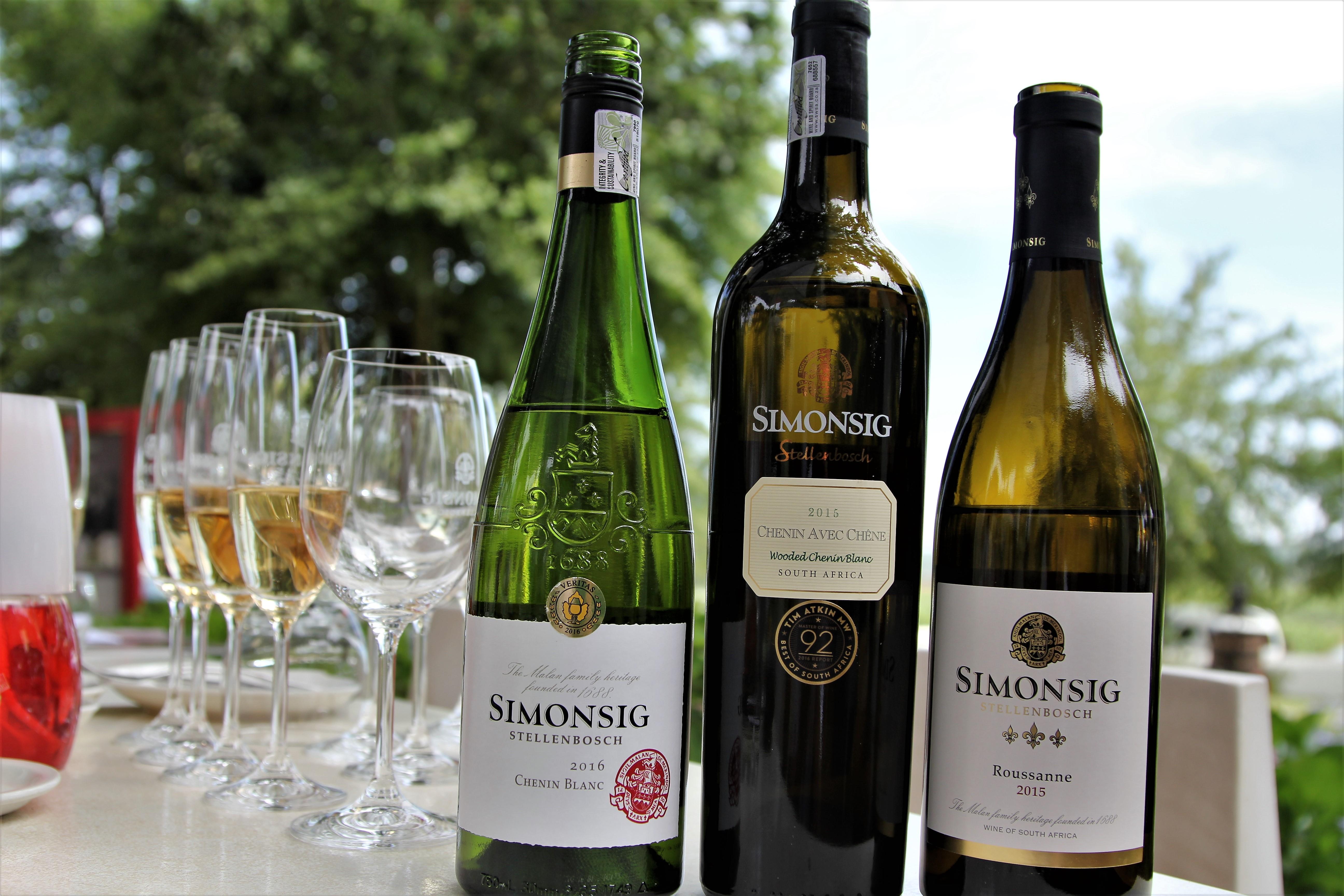 Simonsig vineyard - Stellenbosch