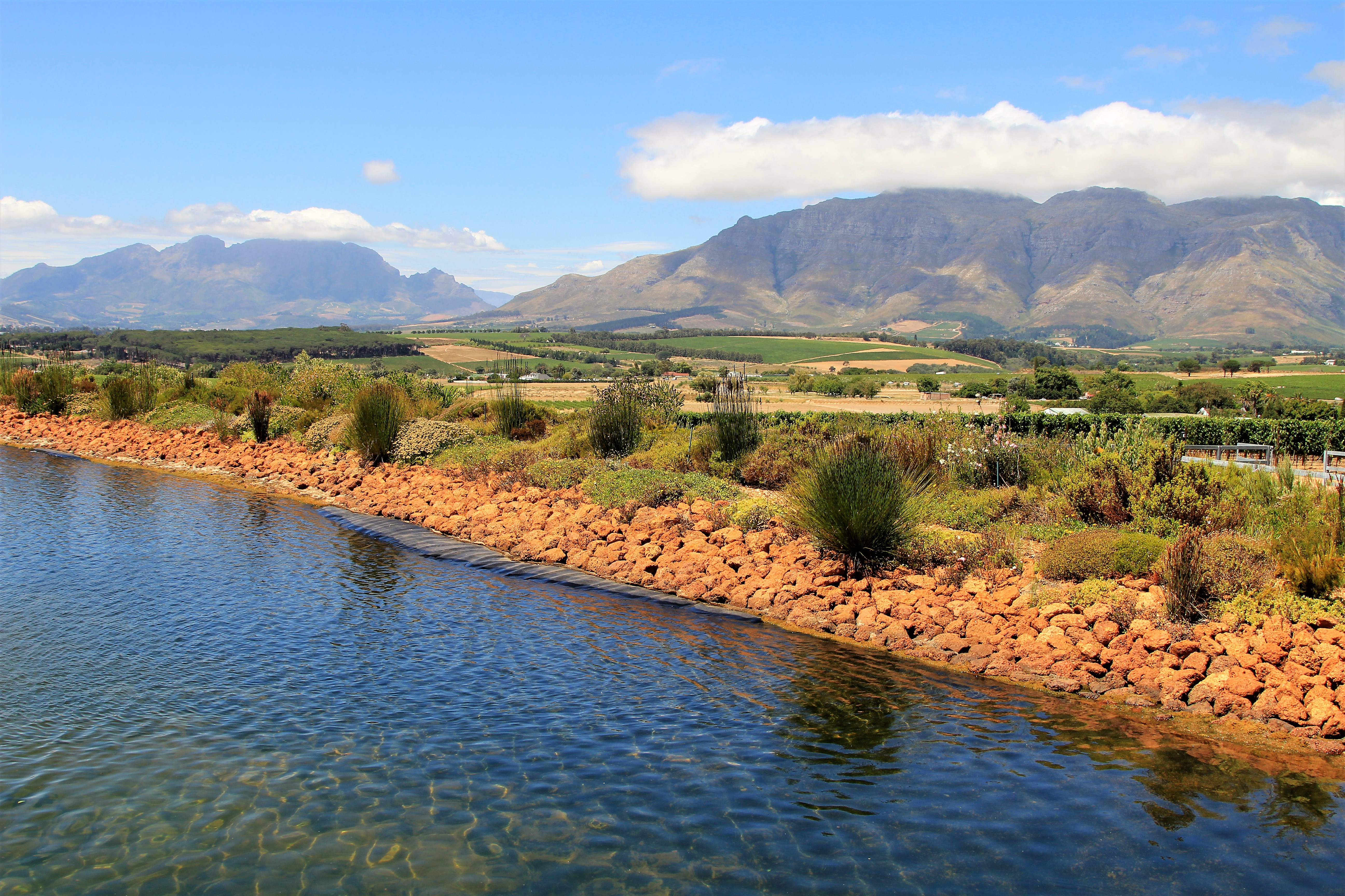 Cavalli Estate views - Stellenbosch