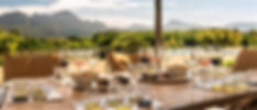 Wine & olive tastings in Stellenbosch - Cape Winelands - South Africa - Luxury Wine Trails - Wine & food tasting tours South Africa