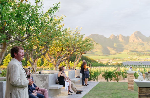 Stunning Vineyard Valley Views of the Cape Winelands of Stellenbosch in South Africa - Luxury Wine Trails bucketlist tours