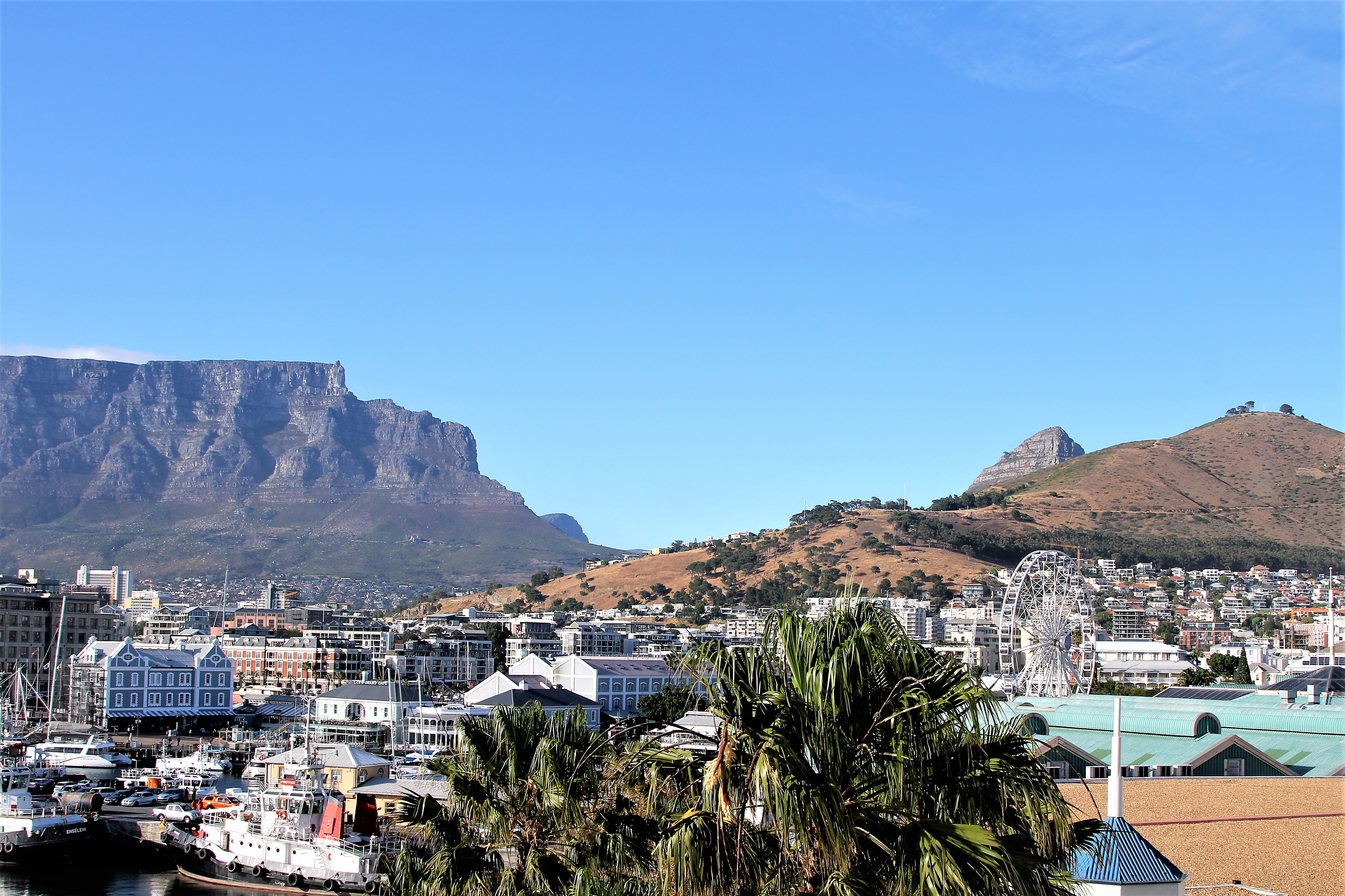Stunning Table Mountain in Cape Town