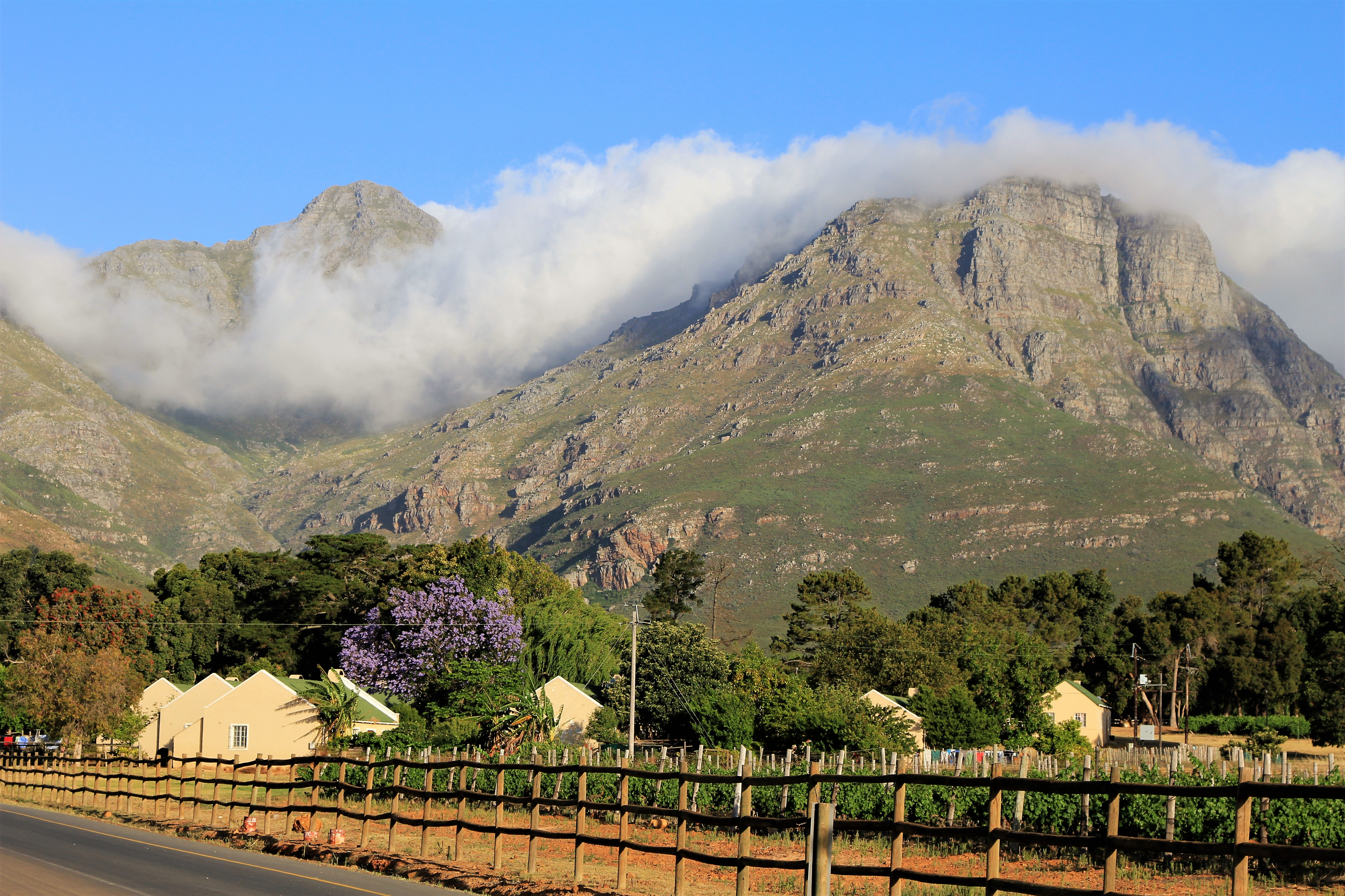 Views over the Stellenbosch vines