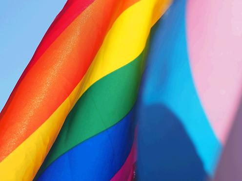 Pride Flag_edited_edited.png