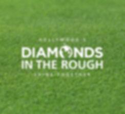 Diamonds-in-the-Rough.jpg