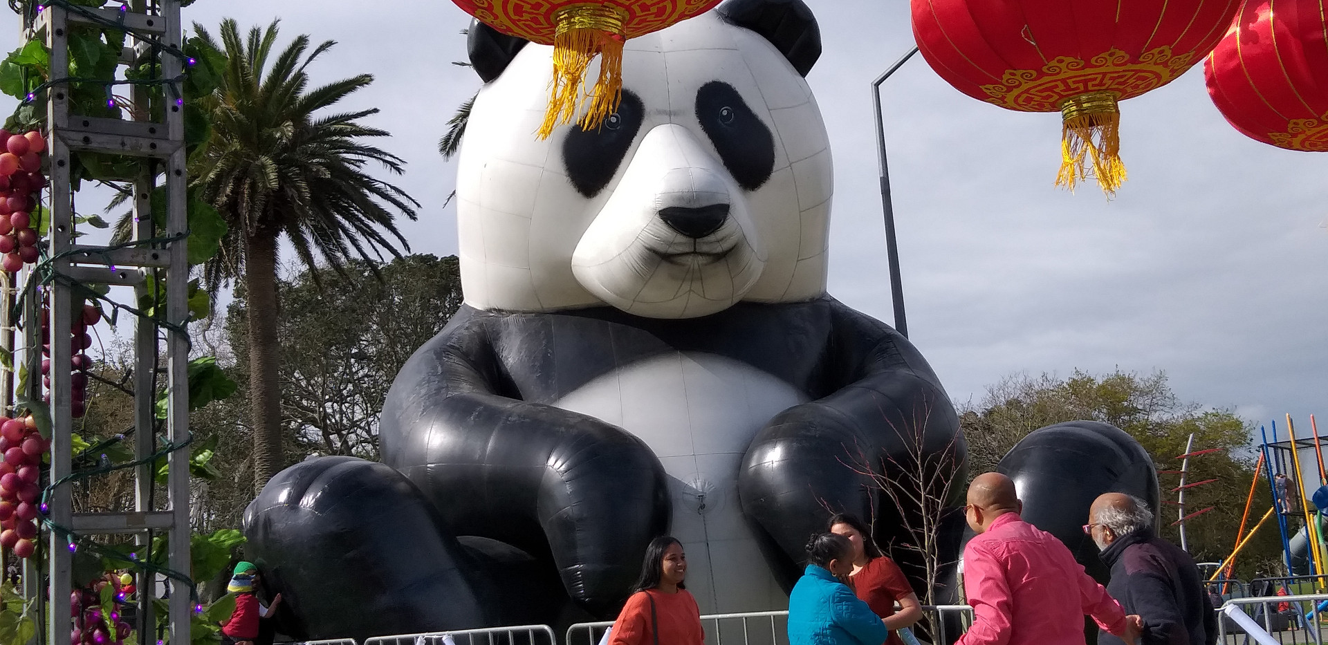 Panda in Dominion Road Moon Festival