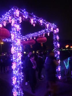 Grapes gate.JPG