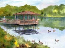 Lake Shelter, Summer