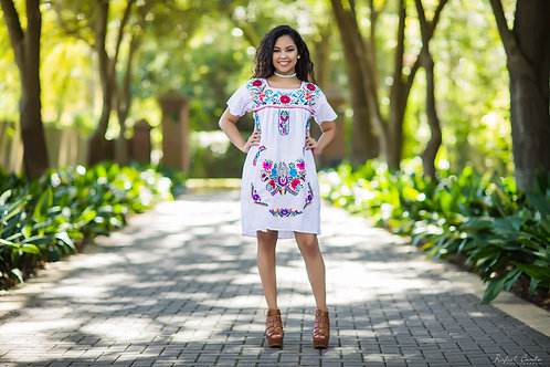 Hand Embroidered Knee Length Dress