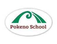 Pokeno School.jpg
