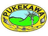 Pukekawa.jpg