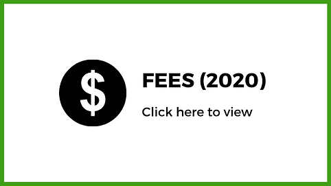 Fees-2020-International.png
