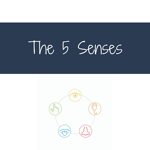 Explore and Restore Your 5 Senses