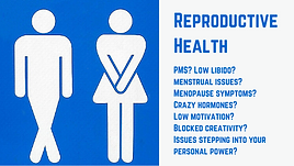 Reproductive Health.png