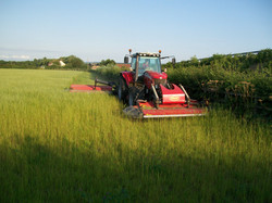 D Clifford & Sons Mowing