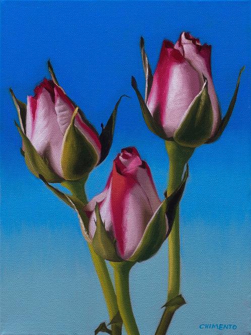 Three Roses II