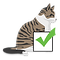Cats M.png