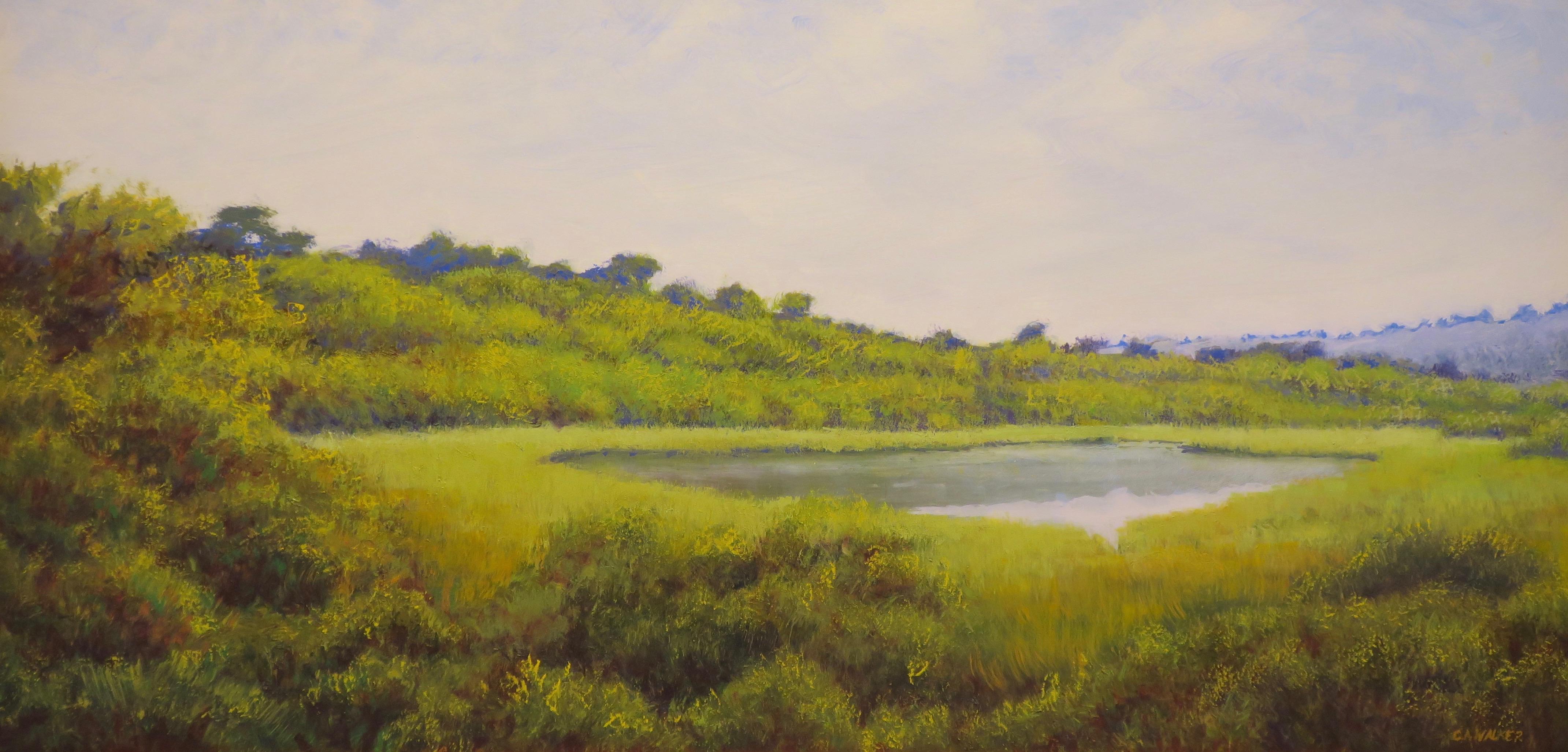 Pout's Pond