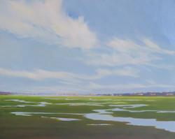 Folger Marsh