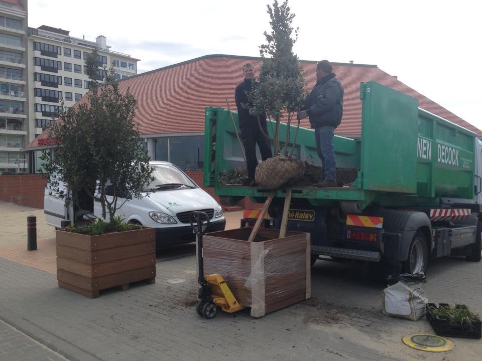 plaatsen van plantenbakken