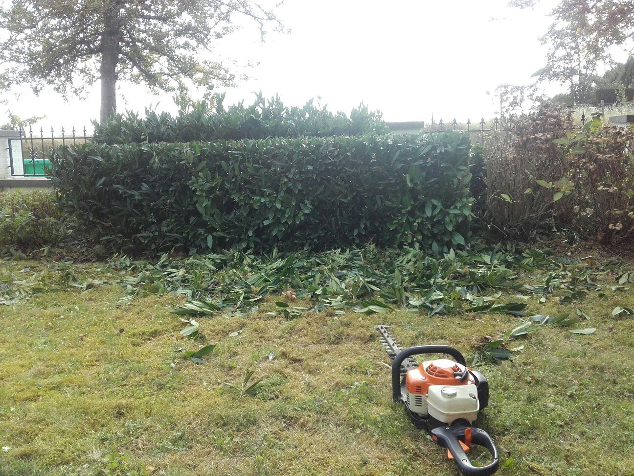 scheren van hagen