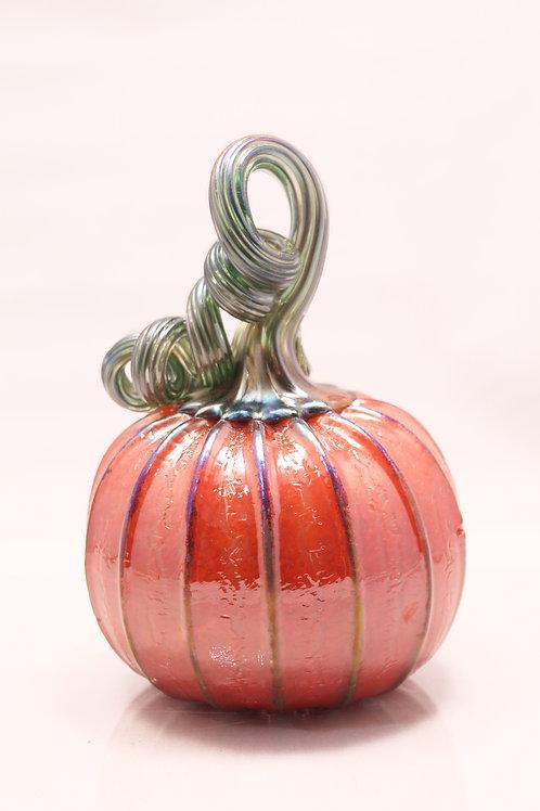 Twisted stem pumpkin