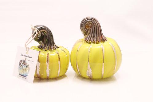Mellow Yellow Pumpkin Set