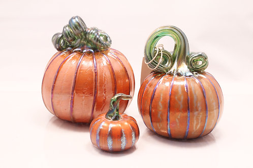 Orange Pumpkin Set