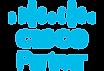Cisco-Partner-Logo-small.png.webp