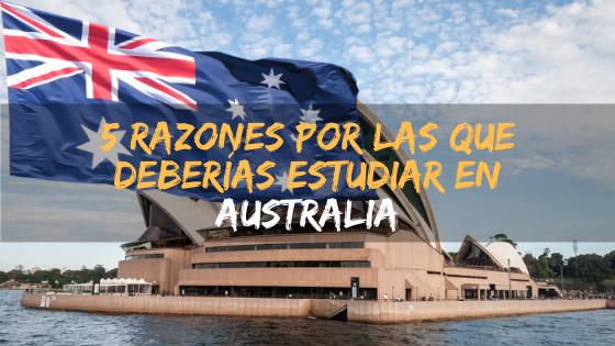 5 razones por las que deberías estudiar en Australia