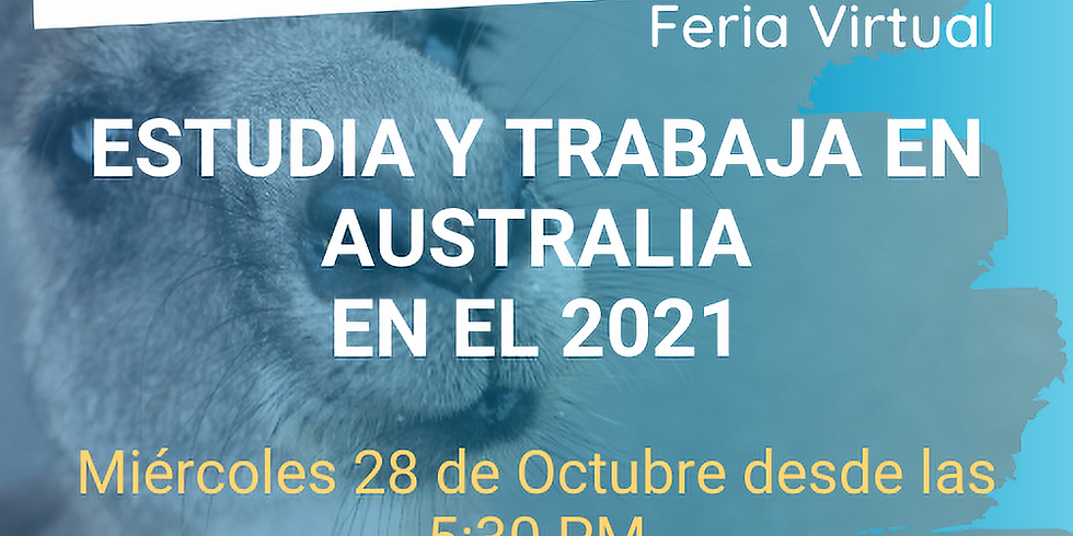 EduAustralia Feria Virtual