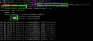 Status of SQL Server Service