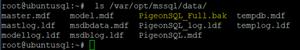 PigeonSQL_Full.bak