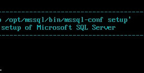 How to install SQL Server 2017 on SUSE?