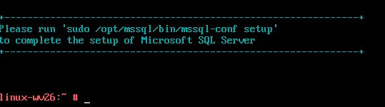We will run mssql-server setup