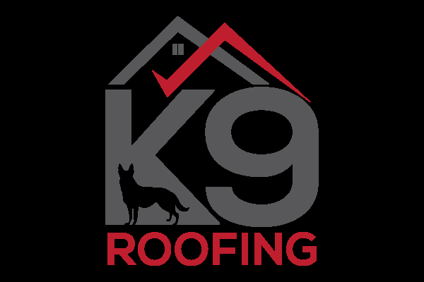 K9 Logo.png