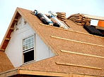 bear roof.jpg
